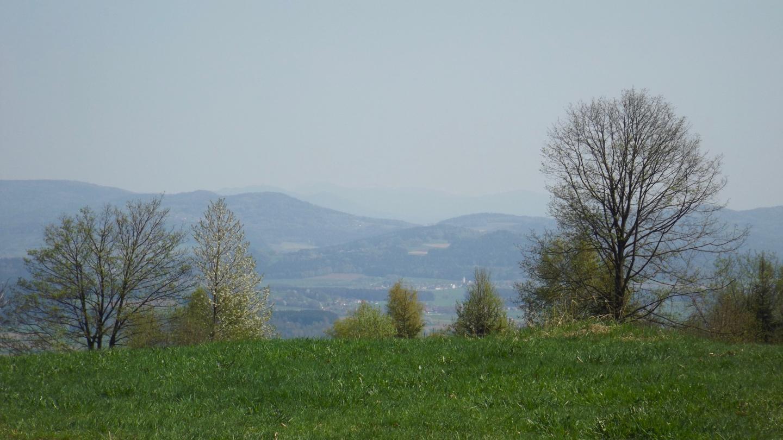 Bayerwald im Dunst