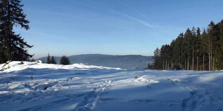 Auch der Drechselberg erfreut sich der Sonne