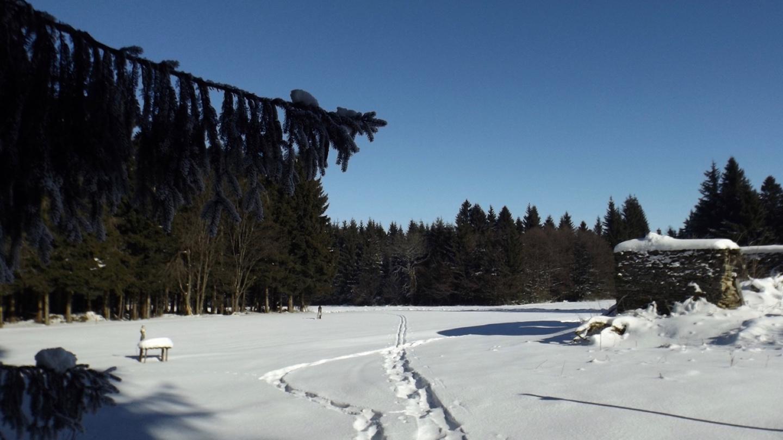 Skispuren zum Weißbrunnen