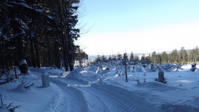 Nurtschweg und Sautreiberweg queren hier tatsächlich ein paar Meter tschechisches Gebiet