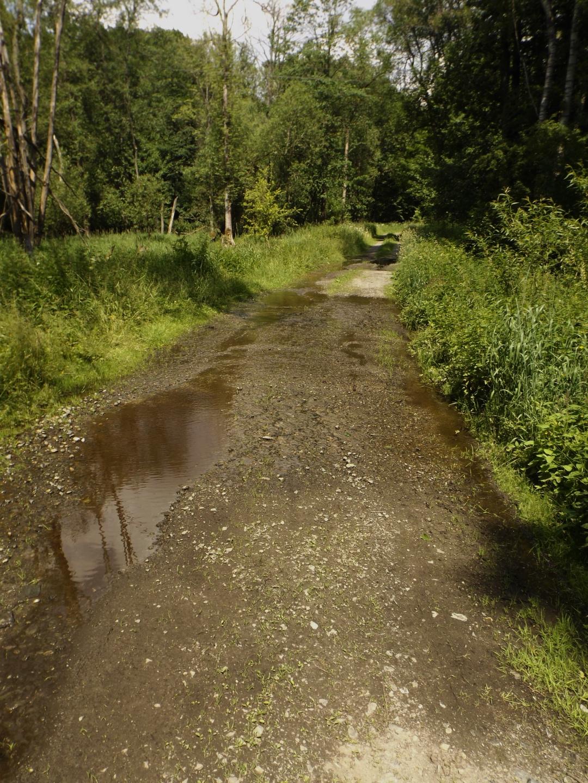 Auswirkung auf den Radweg zur Grenze