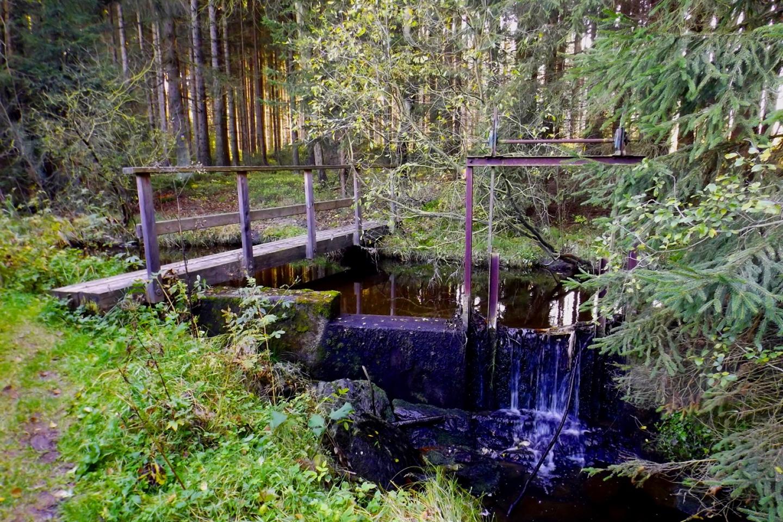 Die Brücke über den Weißbach