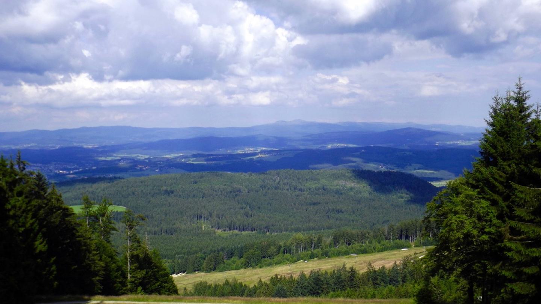 Nationalparkpanorama die Piste hinab