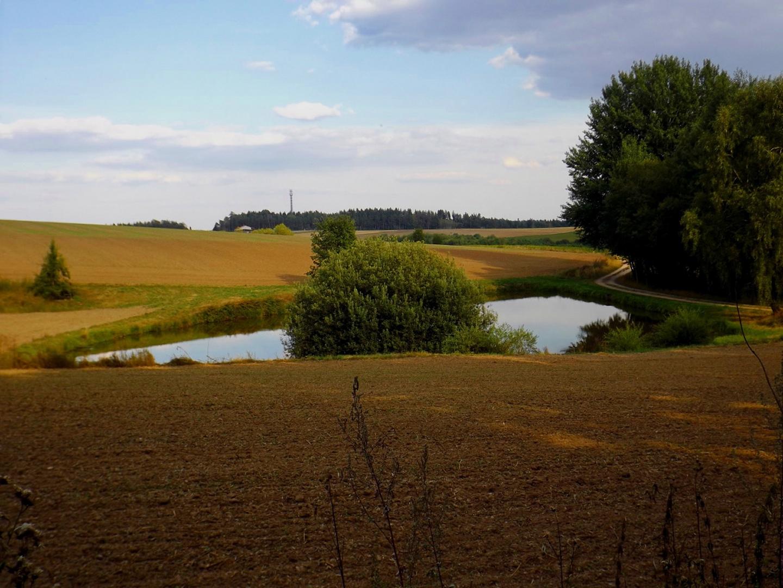 Teich am Karl-Krampol-Weg