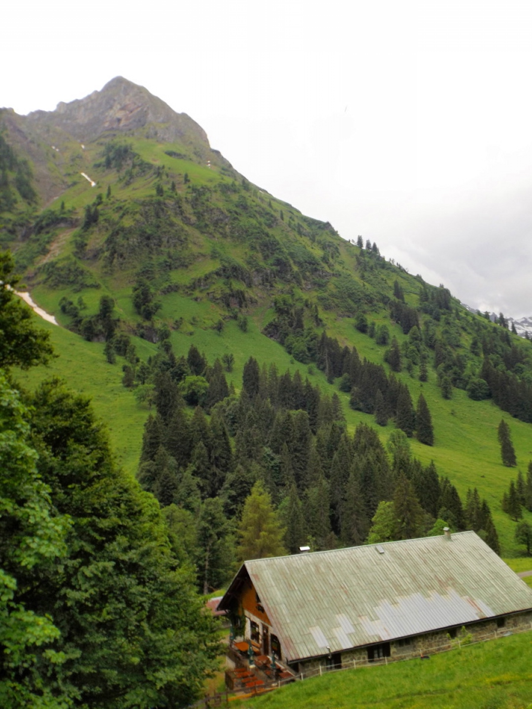 Die Alpe Engeratsgund oder auch Narrenwanghütte öffnet erst etwas später