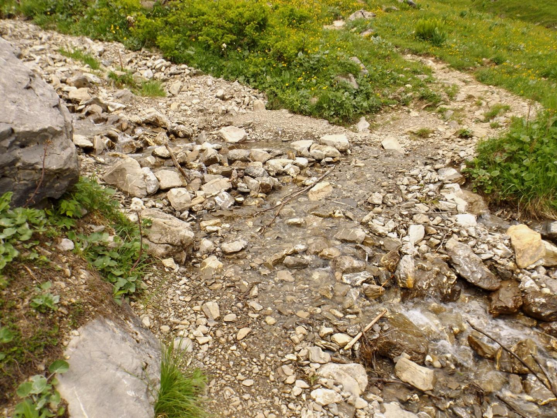 Furt auf der Alpe