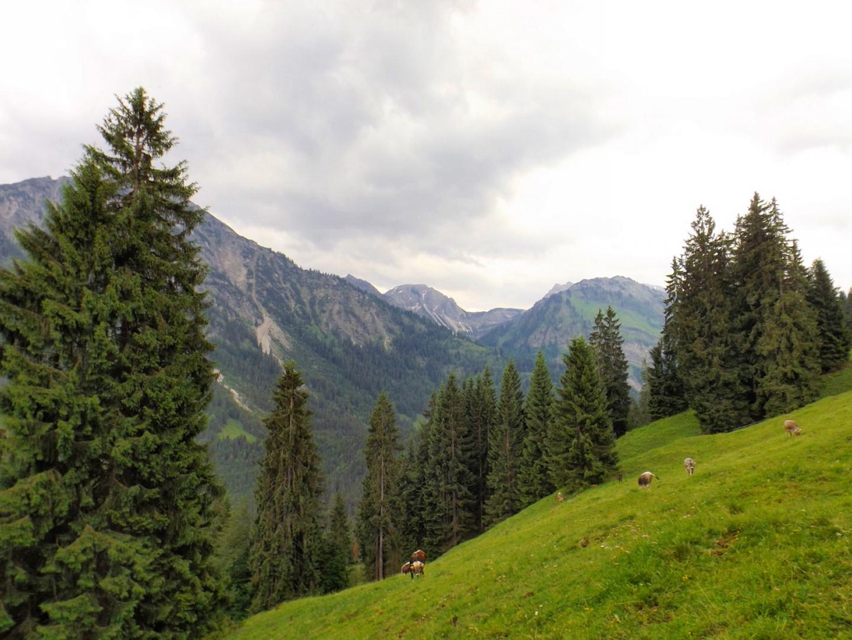 Hintersteiner Tal von der Alpe Mösle