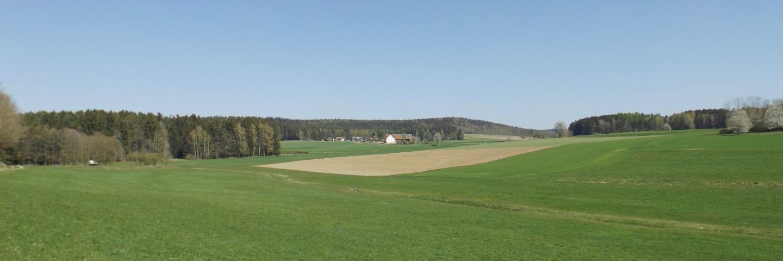 Geißlohe
