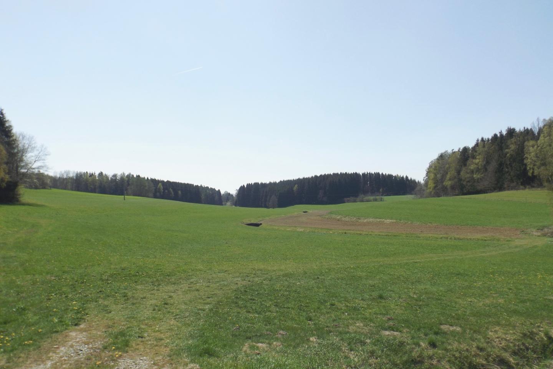 Der Hammerbühl überragt das Tal gerade mal um zehn Meter