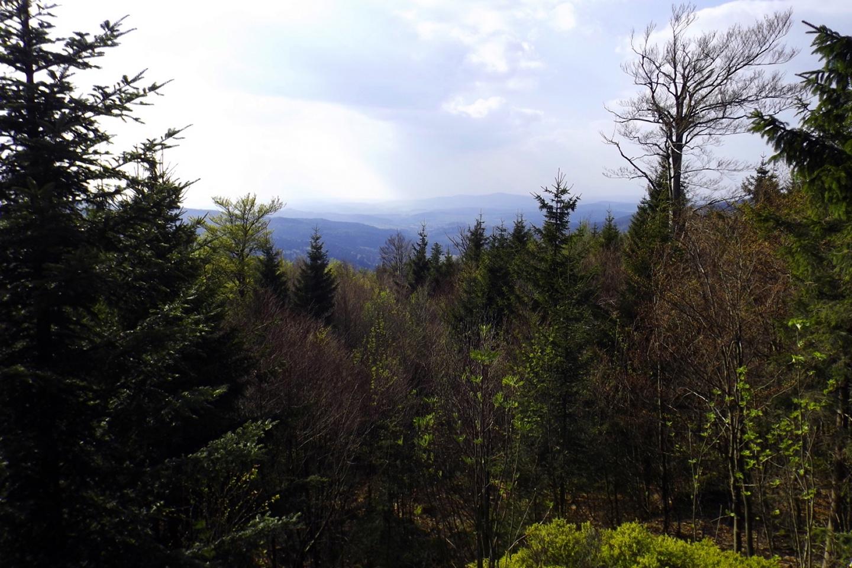 Waldmünchener Land