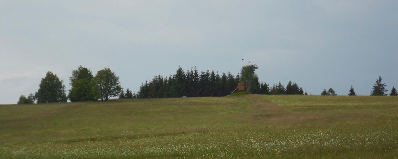 Standort der ersten Altglashütte