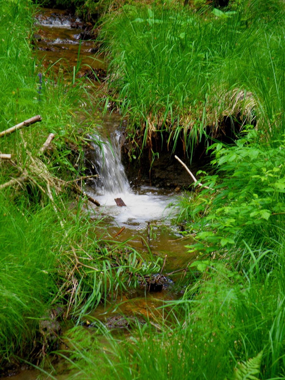Nur das Wasser plätschert immer abwärts