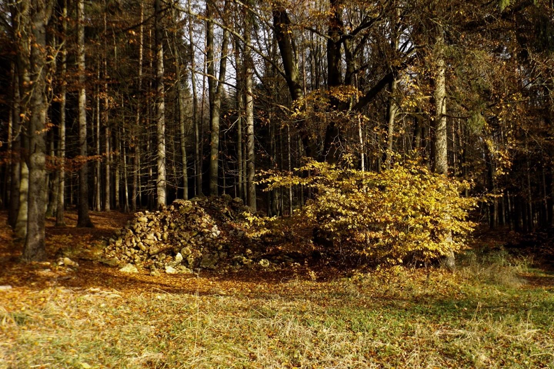 Ackersteine und Herbstlaub