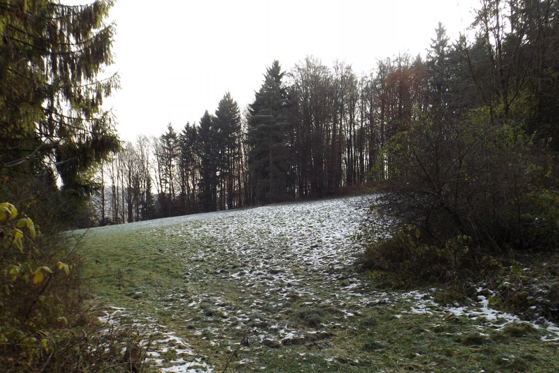 In schattigeren Ecken liegt Schnee