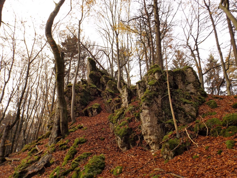 Gipfelformation am Buchenberg