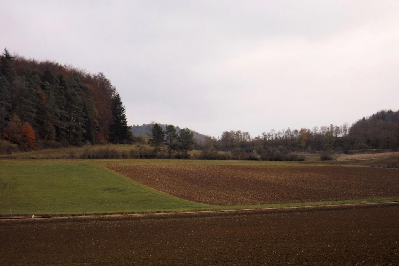Herbstliches Birgland