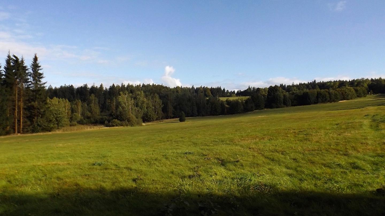 Wiesenlandschaft unterhalb der Silberhütte