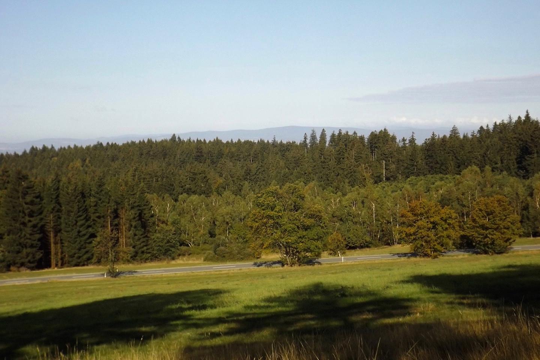 Erster Blick auf den Steinwald