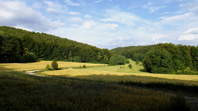 Der Weg nach Mittelburg