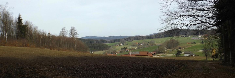 Steinlohe mit dem Reichenstein im Hintergrund
