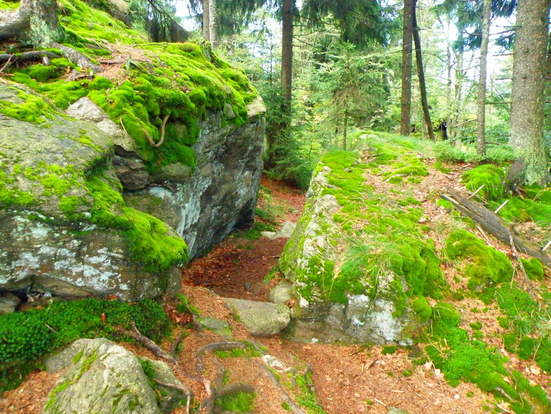 Kleiner Durchschlupf beim Abstieg vom Riedelstein