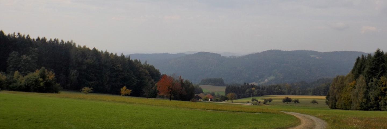 Bonholz und die Hügel, die Cham verdecken