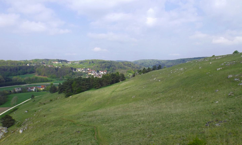 Im Hintergrund das halbwegs zu Schönhofen gehörende Kühschlag