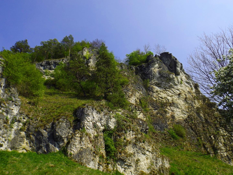 Brutgebiet, deshalb ist in diesem Bereich von Januar bis Juli Kletterverbot