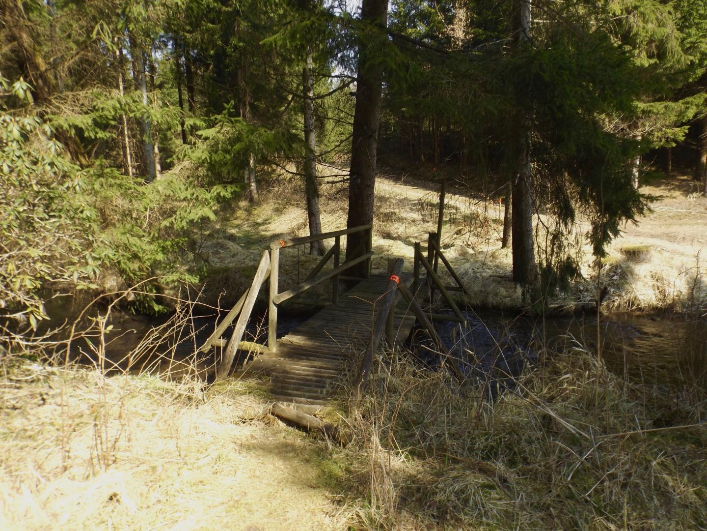 Die Wanderer wurden über das Murachbrückerl geleitet