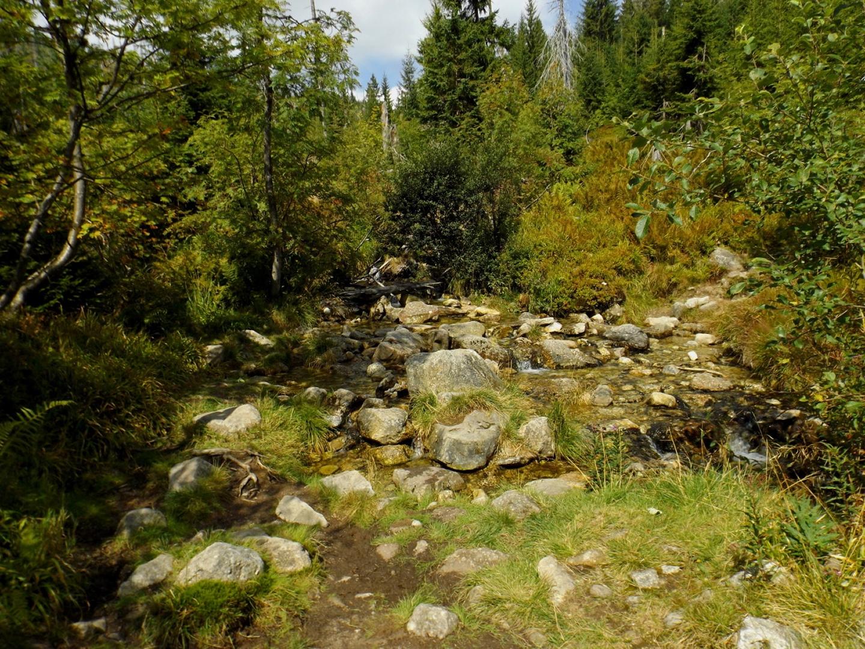 Furt über den Kleinen Schwarzbach