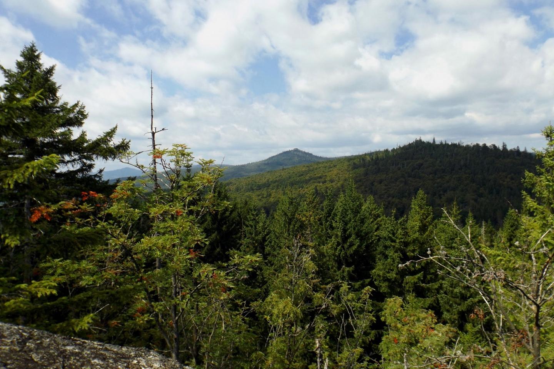 Von einem Gipfel sieht man die beiden nächsten und links durch die Bäume mal wieder den Rachel