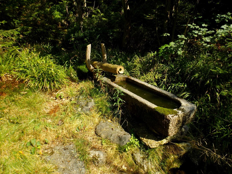 Heute gibt der schöne Brunnen am Mauther Steig kein Wasser