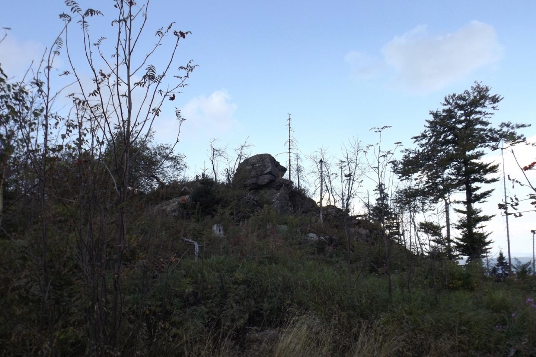 Bayerwaldsphinx