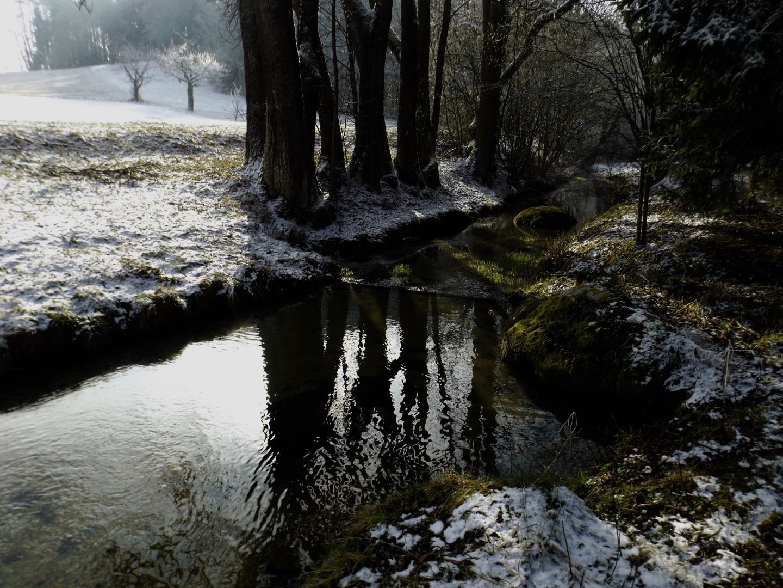Mühlbach gleich hinter der Quelle