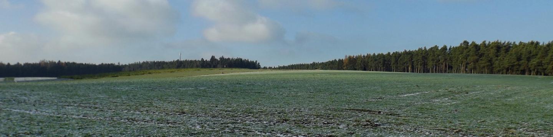 Hochflächen gibt es gelegentlich auch im Oberpfälzer Wald