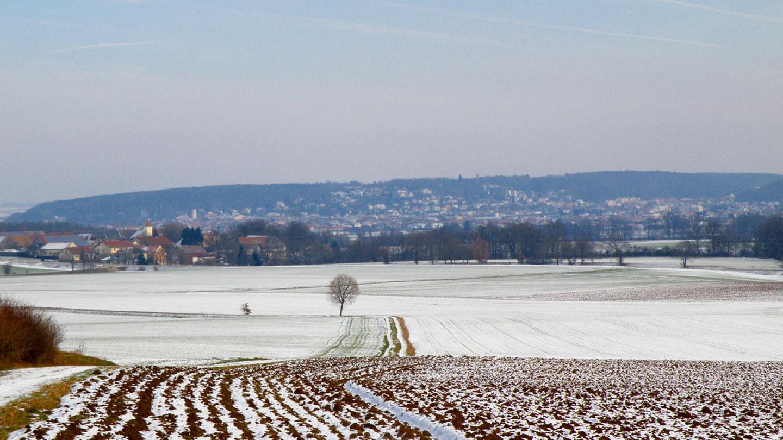 Der Schwandorfer Weinberg, an dem im 16. Jahrhundert tatsächlich Wein angebaut wurde