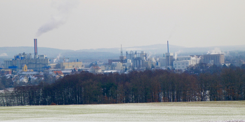 Die Verursacher von 90% aller Asthmaerkrankungen in Schwandorf