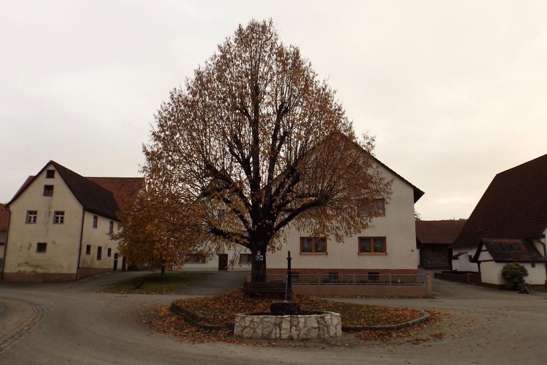 Schronsdorfer Dorflinde mit Brunnen