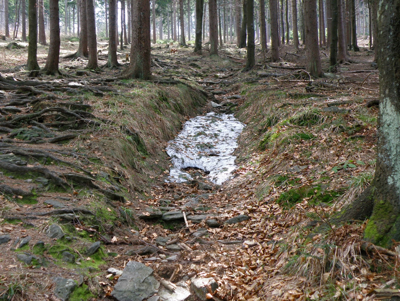 Erstes kleines Altschneefeld