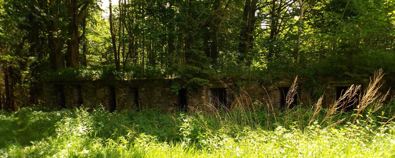 Die Keller könnte man touristisch als Toilettenhäuschen nutzen