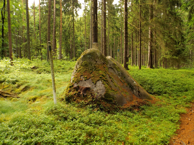Der mittlere von drei Schalensteinen direkt auf der Grenze bei Neuhäusl