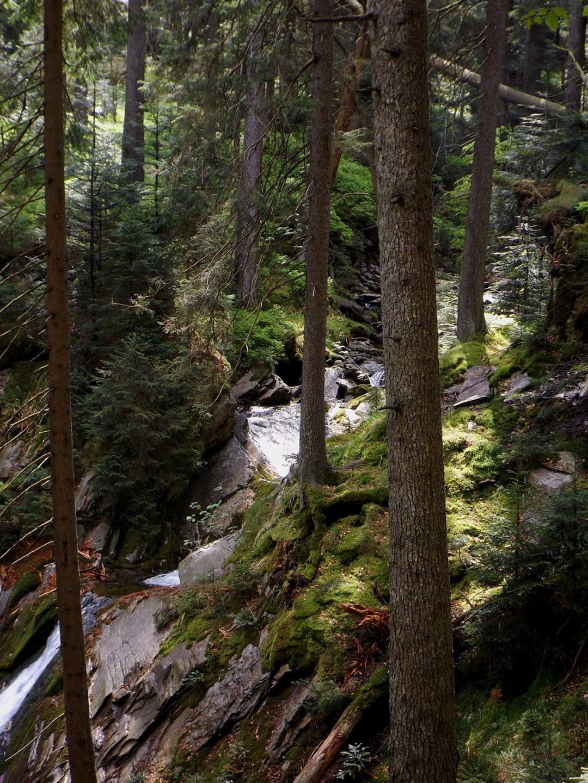 Zulauf zum Wasserfall