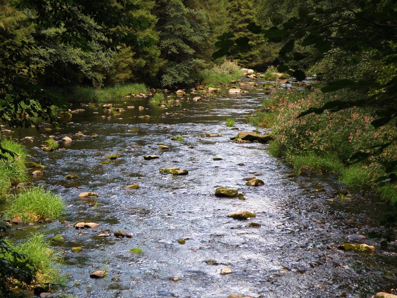 Kraftort Fluss