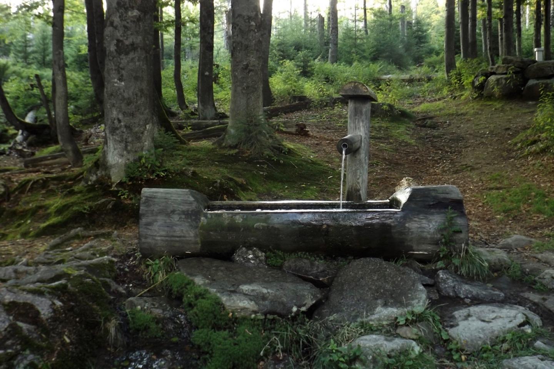 Gleich oberhalb dieses Brunnens zweigt der Wildererpfad ab