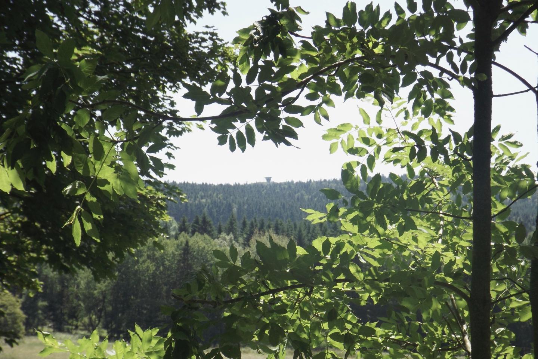 Gibt es einen schöneren Rahmen für den Böhmerwaldturm?