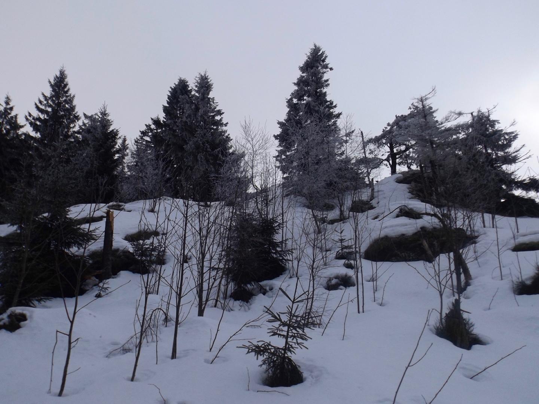Viel eisiger Schnee