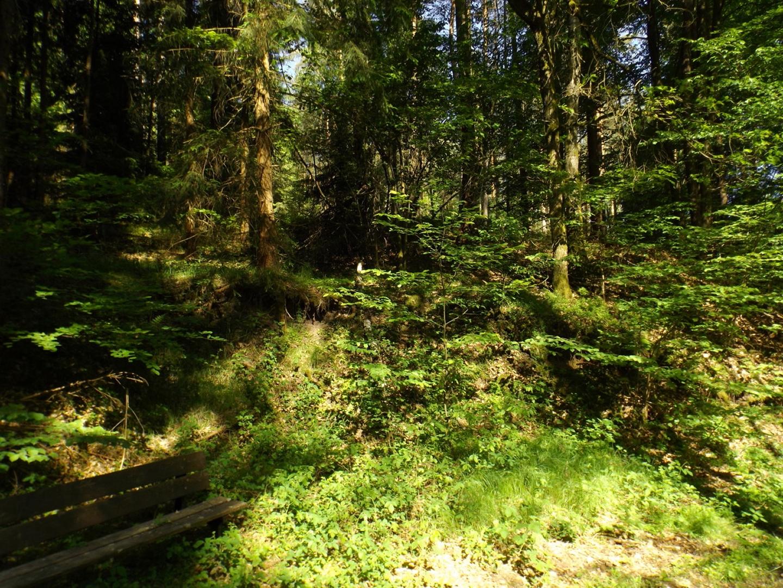 Hier stand laut Taferl vor 60 Jahren eine Schihütte