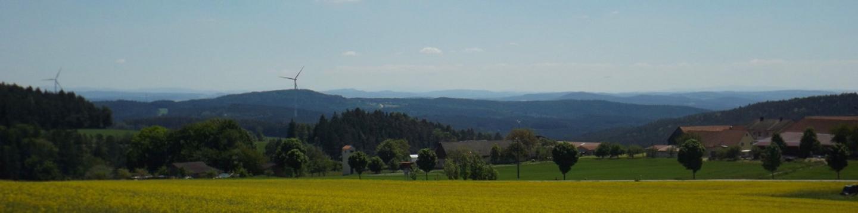Bayerwaldblick