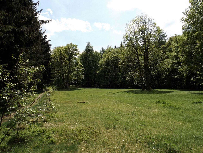 Burgwiese