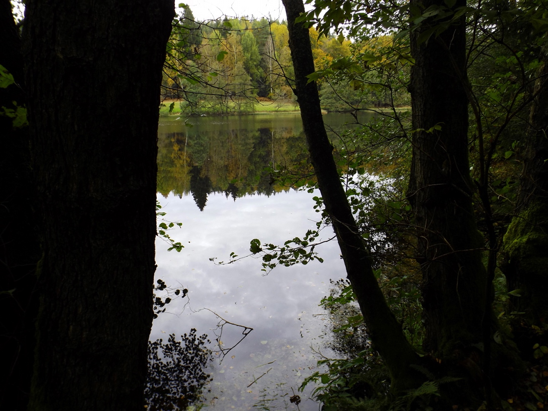 Kleiner Gaisweiher mit Spiegelung